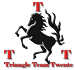 triangleteamtwente